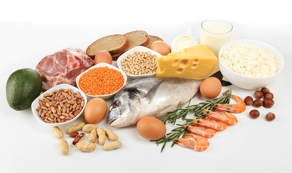 functional-foods-protein